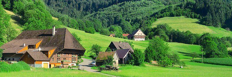 Fastenwandern im Schwarzwald - Bild des Hotels